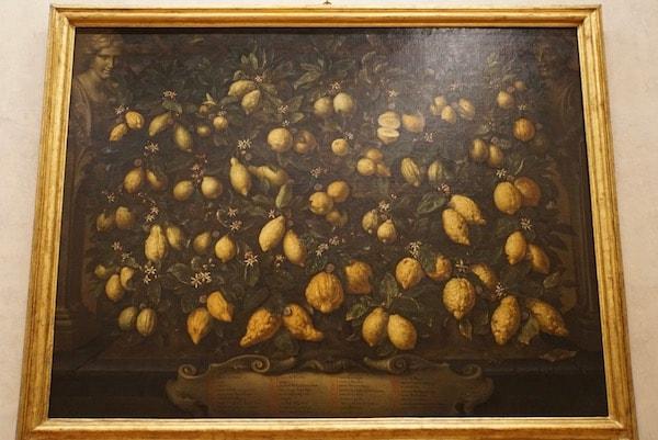 バルトロメーオ・ビンビ 静物画 レモン