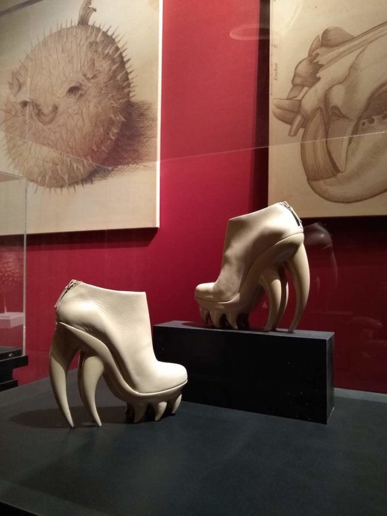 イリスヴァンヘルペン 靴