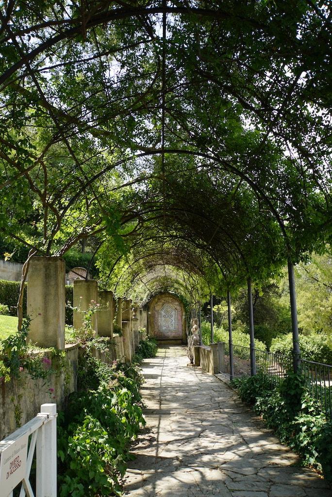 バルディーニ 緑のトンネル