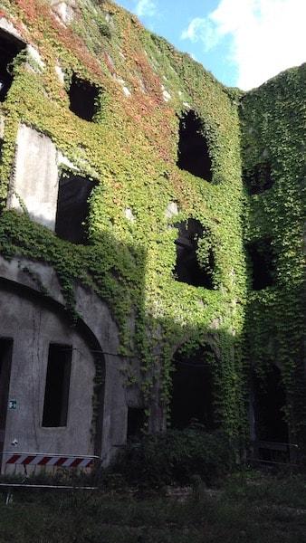 サントルソラ修道院 中庭